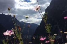 迪庆香格里拉巴拉格宗大峡谷 看山是山,看水是水 鸟语花香,朝圣之路 远看佛山,近走山路 最美不过如此