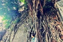 游:南风古灶——岭南天地——佛山祖庙          早晨第一站去的南风古灶 个人很推荐,虽然景点