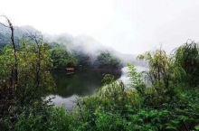 阵阵春风,吹散云雾,太阳欣然露出笑脸,把温暖和光辉洒满湖面,早安!