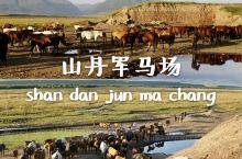 甘肃张掖山丹军马场:秘而不宣又人气爆棚的小众景点! 一个人超少、超便宜的骑马好去处,有好几个场,建议