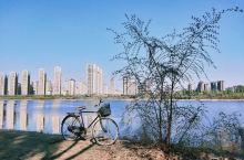 潮白河通州段