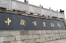 贵州毕节市•百里杜鹃风景名胜区2018年3月23日(周五)
