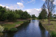 今天天气好晴朗,特意到辰山植物园踏青游览,感受园区的好风景。