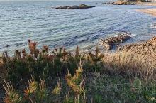 胶东是我的老家,一百多年前我的爷爷跟着他的爷爷从平度经威海到大连。心心念念的地方!美丽的海岸线!清澈