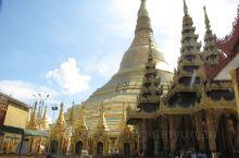 缅甸仰光巨大的金塔