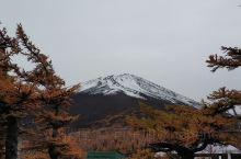 唯美富士山。