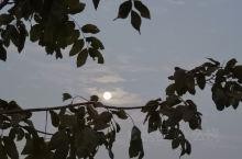 2020年2月10日的朝阳,蓝天,白云!