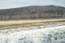 坐在火车上看见那片森林与雪体验大自然的美妙