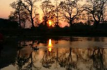 野河边极美落日!尼泊尔奇特旺国家公园看落日的最佳处。