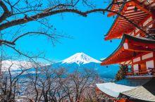 河口湖第一天下雪,还以为和富士山无缘了,没想到第二天天气大好,要知道一年只有八十多天可以看到富士山,
