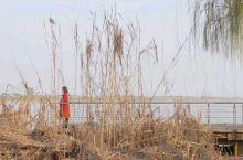 巴溪洲位于长沙市岳麓区坪塘街道,湘江往南过了黑石铺大桥,再走大约是8里路就到了。 洲上有着温馨的洲岛