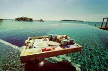 马尔代夫最近大火的漂浮早餐,吃起来比较费劲,还得小心翼翼。但是(划重点):这是最美的记忆,曾经年轻过