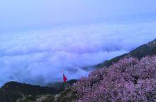二十岁的我们就该来一次夜爬泰山。         晚上九点半开始旅途,和小伙伴儿一起摸黑前行,精神力
