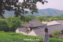 上海周边游【入住帐篷酒店,赏景茗茶】 这是此次入住安吉酒店中名为谭府的客房景致,享有美丽的湖景和茶山