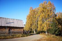 禾木的秋天