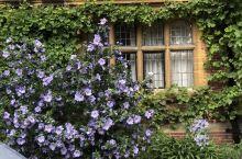 剑桥三一学院园区逛逛,如此精美,多少人希望的地方!