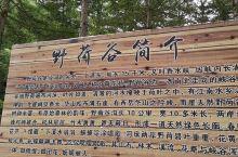 泾源县野荷谷风景名胜区