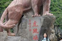 虎跳峡景区: 兜兜转转,我的好运又转回来了,返回丽江途中路过虎跳峡,景区竟然解禁了,轻松购票进入,一