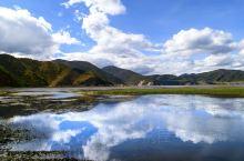 村庄,牛羊,草原,湖泊,漂亮得真是一副画卷。纳帕海三面环山,是高原季节性湖泊、沼泽草甸,也是黑颈鹤等