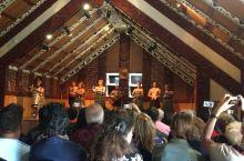 新西兰罗托鲁瓦看毛利人表演