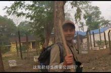 【尼泊尔旅行vlog】奇特旺国家森林公园|4岁宝宝在爸爸背上的一场丛林探险。老公觉得好刺激好好玩儿,