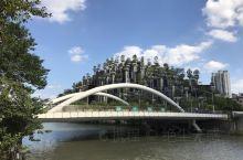 蓝蓝的天、白白的云,还有那些绿色的小树苗  最喜欢的是苏州河昌化路桥边这栋建筑,名:古巴比伦空中花园
