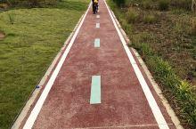 滨湖路自行车道在完善中 看得出来对骑行出行越来越有友好