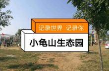 易县匡山小龟山生态园
