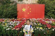 国庆期间去了秦皇岛野生动物园,1点进园,5点左右出园,足足逛了4小时,体验了一把移步异景的快感,也看