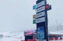 去年来富龙滑雪场很多次,温暖无风绝对是对雪友最大的热爱。与其说喜欢冬天,不如说喜欢滑雪。畅滑之后在山