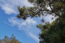 葫芦岛•兴城•首山国家级森林公园