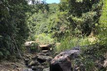 山间溪谷~山林小道~超清爽的空气~大自然的氧吧……