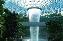 新加坡樟宜机场藏着一个热带雨林,不花钱也可以看个够!  阳光透过玻璃屋顶,多角度地折射在四周,使雨林