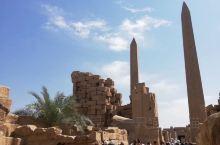 埃及行第三天  早上五点半从红海酒店出发,前往埃及南部古城卢克索。四个多小时的车程,原