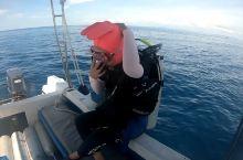亚洲最美潜水点 仙本那诗巴丹潜水VLOG