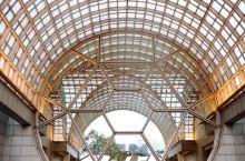 如果说滨海湾金沙酒店以无边泳池为亮点,成为知名的奢华网红酒店,那离它不远的丽思卡尔顿美年酒店则是一个