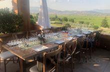 土耳其伊兹密尔郊外的一个酒庄,据说以前土地只是种的土豆,在80年代被意大利的酒商买下后开始种植葡萄做