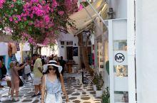 米克诺斯岛的美和圣托里尼岛真的很不同,穿梭在海港边的老城区,曾经在图片上看过的经典画面,在这里随处可
