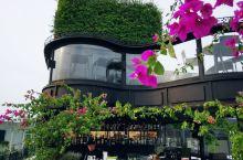寻食记 之 Gourmet corner Restaurant  越南菜是一种比较接地气的菜式 如何
