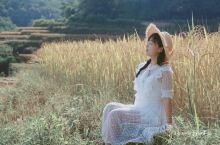 元阳梯田的美,并不局限于旺季的天空之镜 秋季正值淡季,漫山金黄的稻谷,独具风情。  线路:两天一晚的