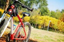 延庆自行车骑游景区位于妫河森林公园核心区,毗邻2019年世界园艺博览会会址,是延庆骑游的黄金路线。路