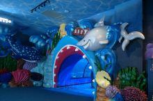 海底世界,美人鱼表演