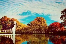 加拿大首都!自然是不一样的非凡!秋赋予的色彩在都市里一样让人无法抗拒!四周都是五彩的斑斓,深秋此时与
