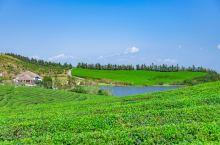 """从大嵩岭开始喜欢这个""""宁波小瑞士"""" ——福泉山景区的福泉龙潭 这次带着爸妈是从景区坐着景交上来的→_"""