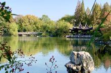 【游常州红梅公园有感】  冬探头,秋不走 湖光云影水自流 江湖暖阳久