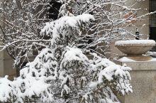 2019年北京的初雪,11月29日如期而至