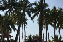 海南7天自驾游之东郊椰林风景区,春节期间一家人从深圳自驾到海南,海南过冬是真的不错,一家人短袖出行,