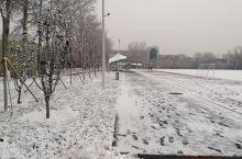 瑞雪兆丰年