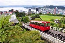 惠灵顿是新西兰首都,国会大厦由哥特式、文艺复兴式和现代式三大建筑组成,相扶相依,融为一体,可谓一个奇