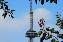 鹤山大雁山塔,有没有巴黎铁塔的赶脚.......